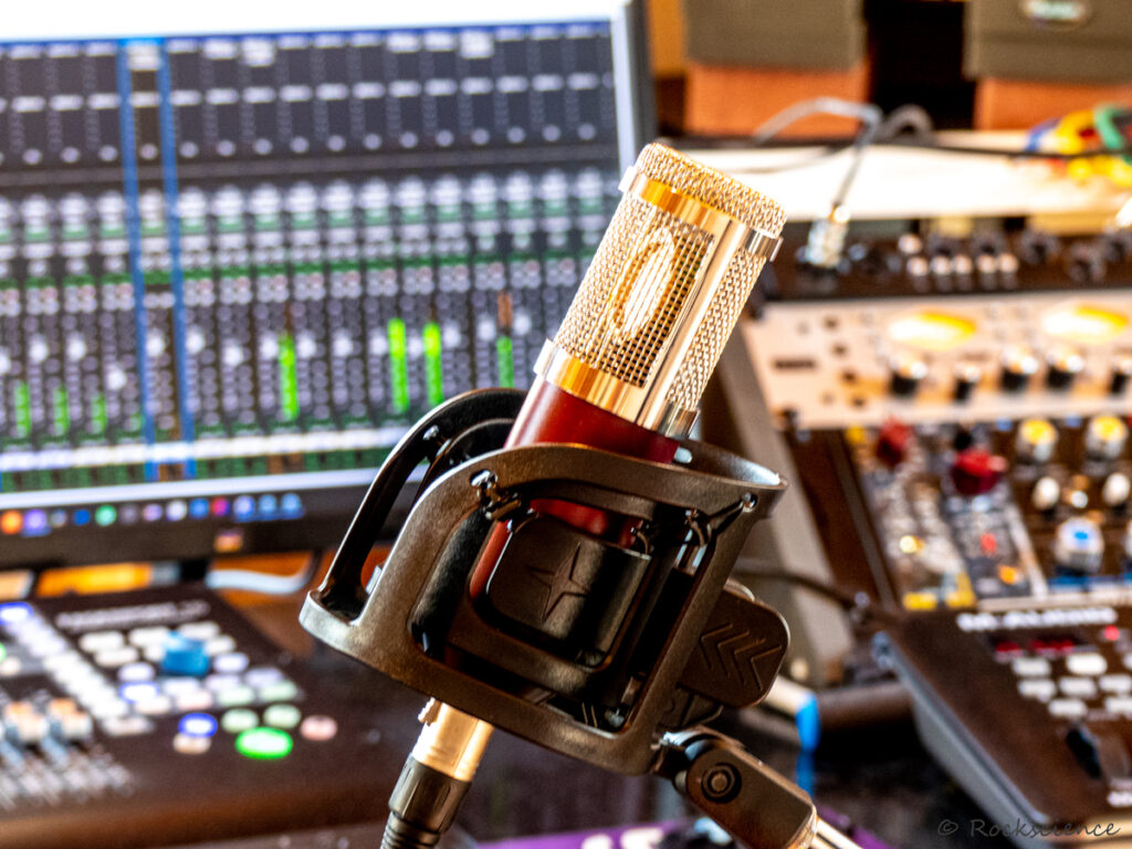 rs/12 microphone