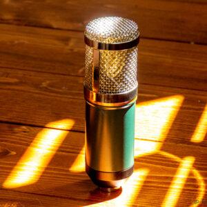 revived BM800 mic